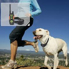 Ipets PET618 Dog Shock Collar 800m Remote Controlled Collar 100% Waterproof & Rechargeable Dog Training Collar with Beep Vibrating Electric Collar for 2 Dogs
